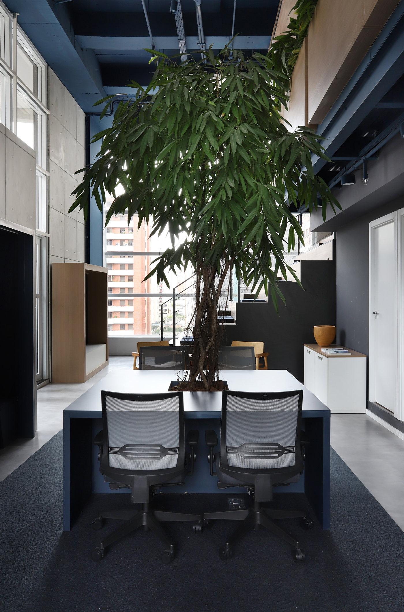 lufthansa-office-brazil-10