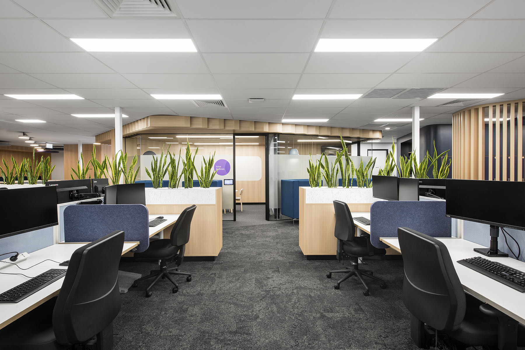 cara-office-adelaide-1