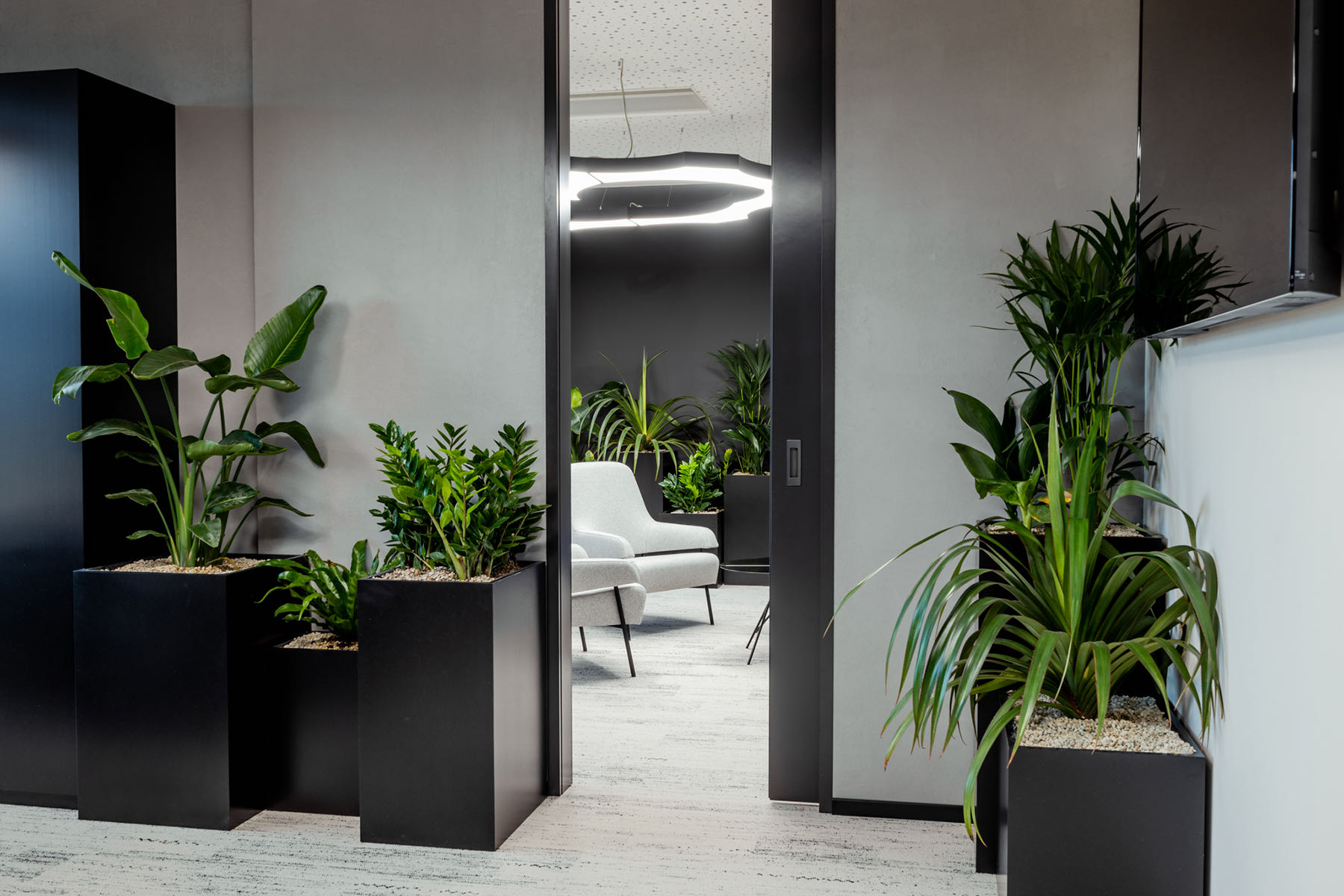 pkv-brno-office-9