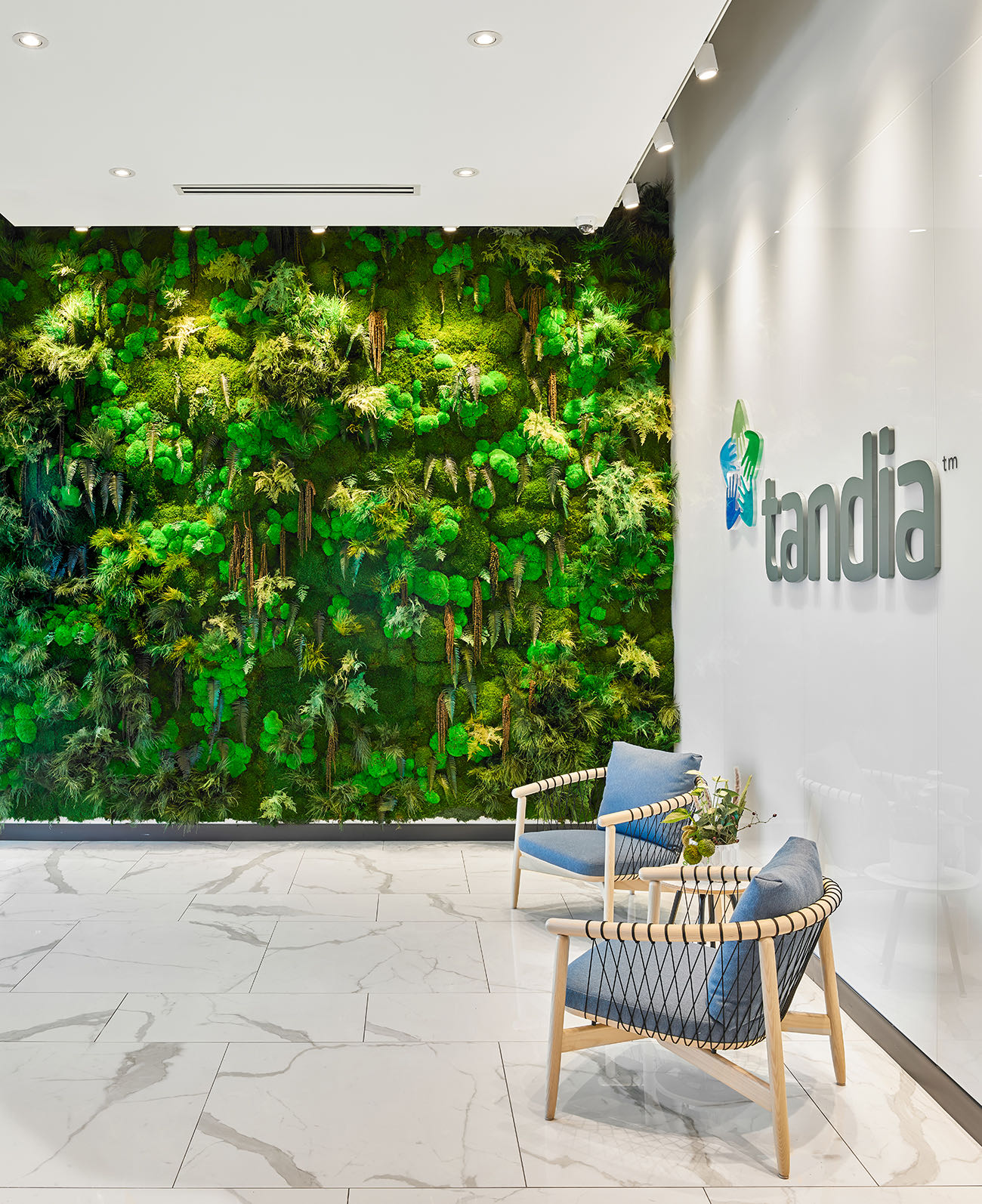 tandia-financial-office-12