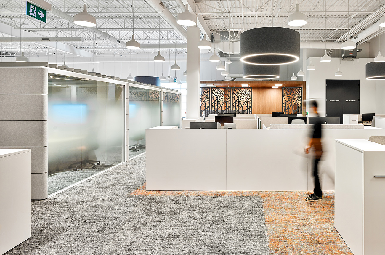 Inside Tandia Financial's New Burlington Office