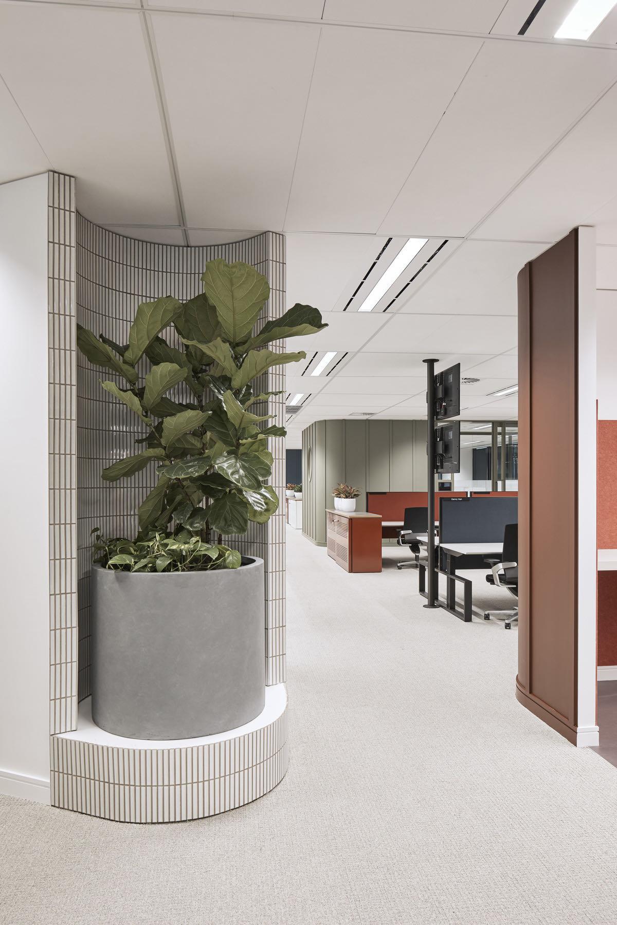 yancoal-sydney-office-7