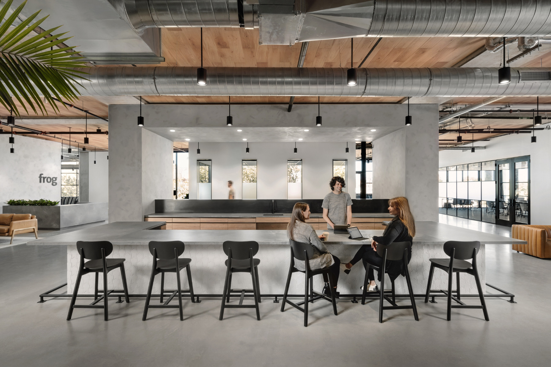 frog-design-austin-office-3