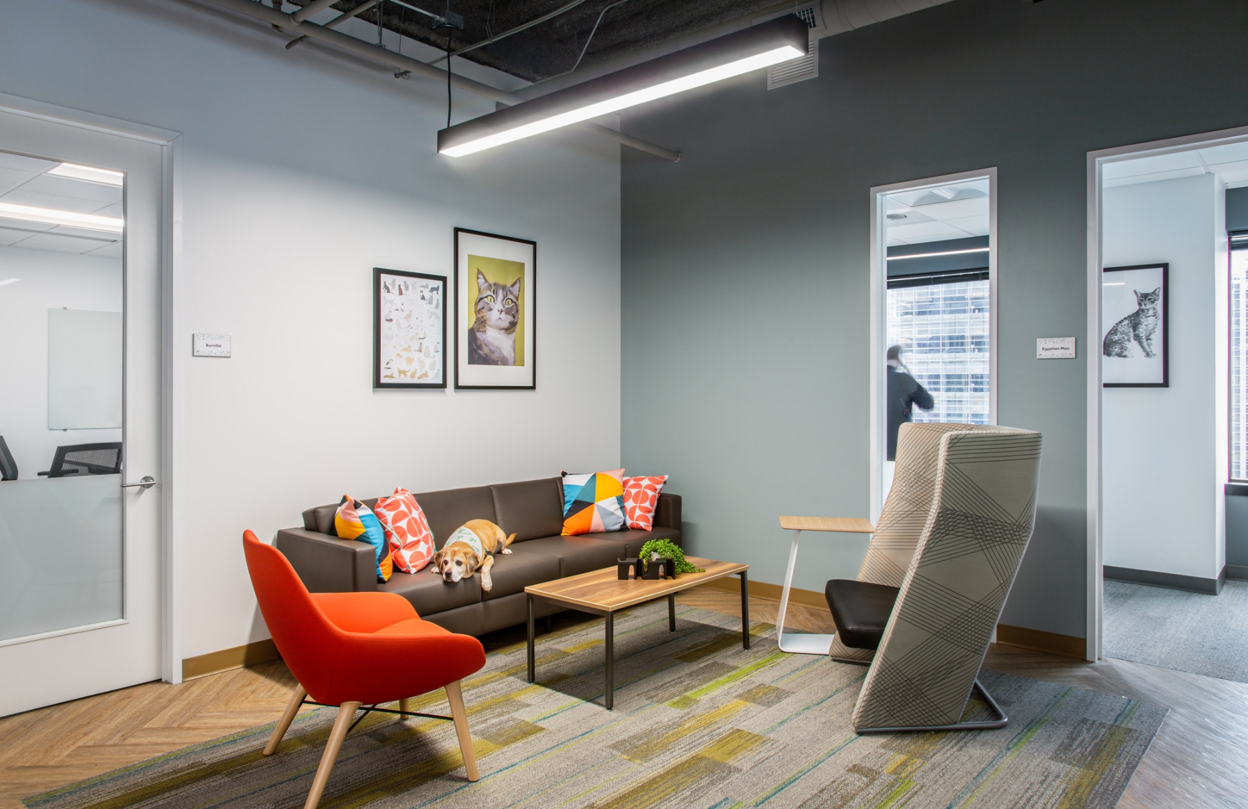 rover-office-seattle-10