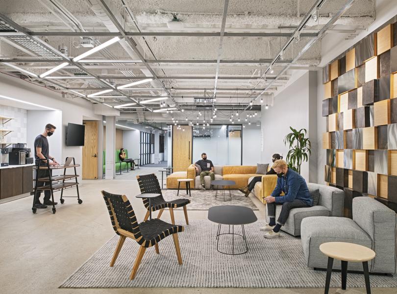 llama-soft-office-1