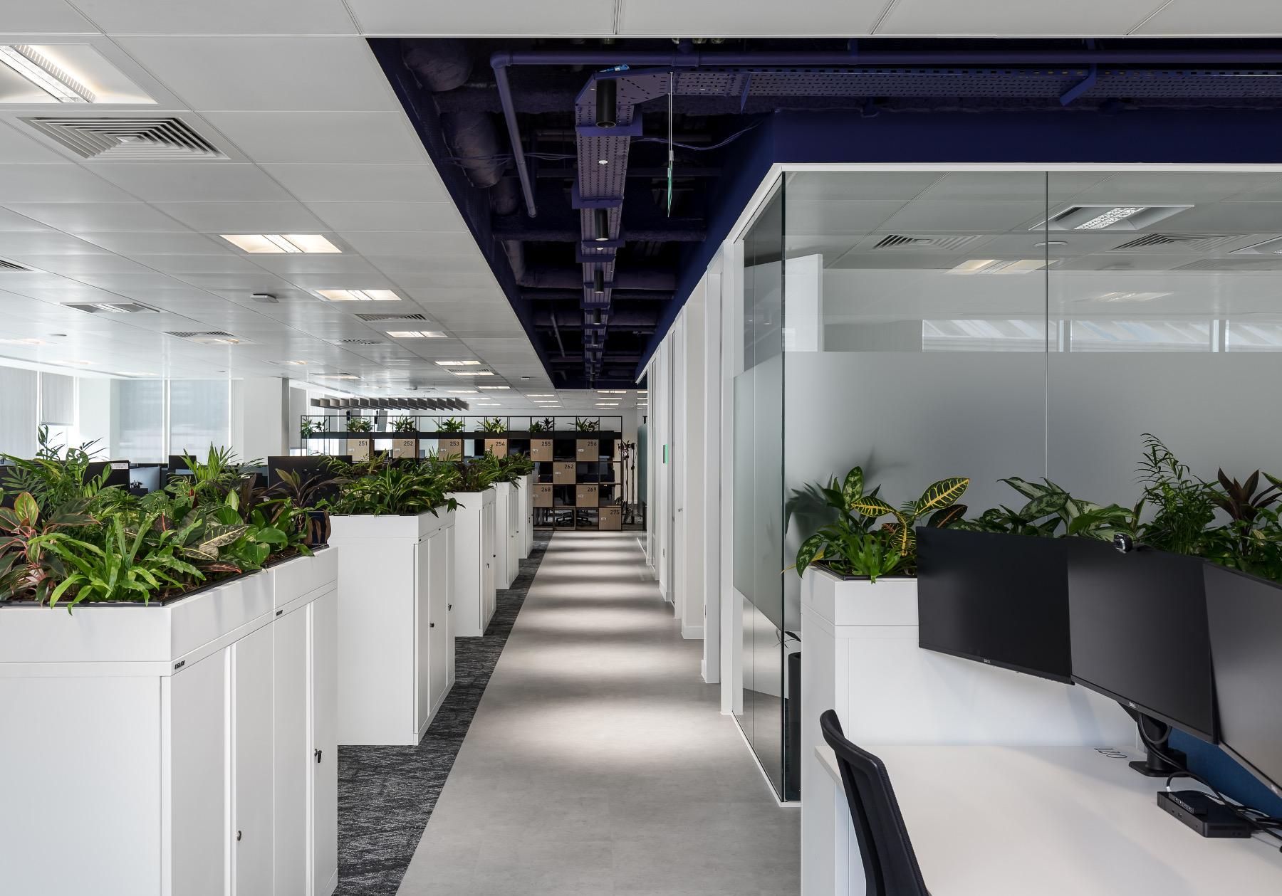 trayport-office-10